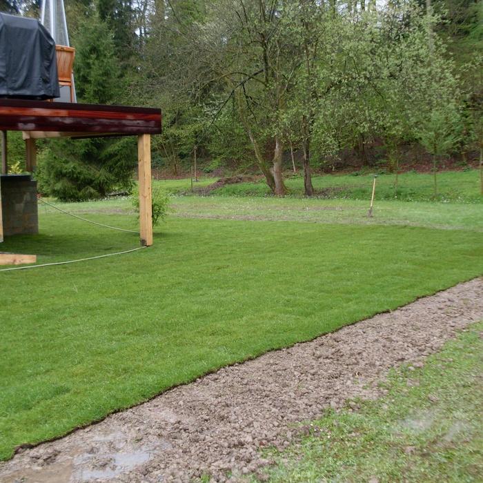 Tonte de pelouse w ris localisy for Devis pelouse